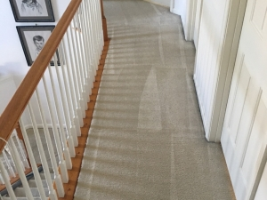 ADC Carpet Cleaning of Martinsburg, WV